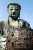 Daibucu