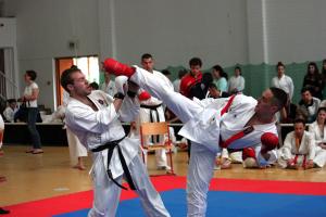 3. Galga-SZAC Kupa - NemzetkĂśzi Karate BajnoksĂĄg